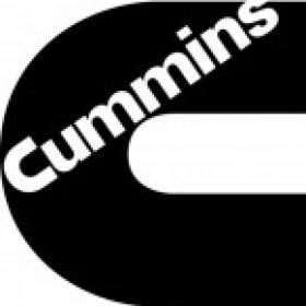 Cummin apart's picture