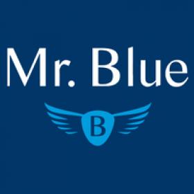 Mr Blue's picture