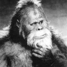 Bigfoot's picture